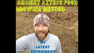 Chinampa, Ancient Aztec Food Growing Method (my new experiment)