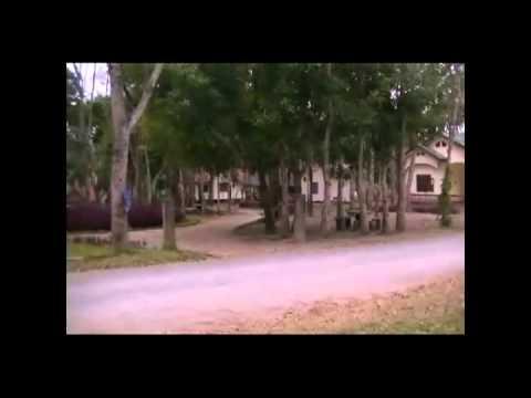 Lug Txaj   Thaaj Yaaj