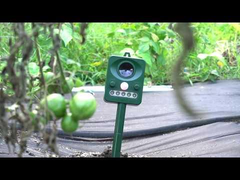 HopTopper Ultrasonic Pest Repeller Review
