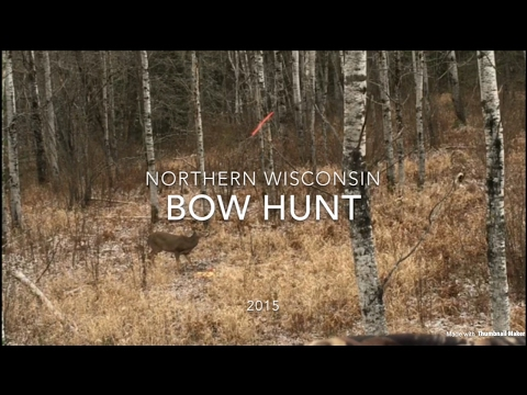 Northern Wisconsin Bow Hunt