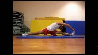 FLEXIBILITY: treinando flexionamento para espacate/splits