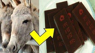 ما هو سر في شراء الصين للحمير بشكل كبير من كل مكان في العالم تعرف على سبب