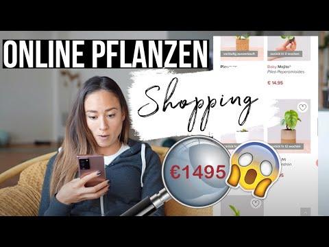 PLANT ONLINE SHOPPING! ☘️ Ich teste die beliebtesten Stores mit euch 😄❤️
