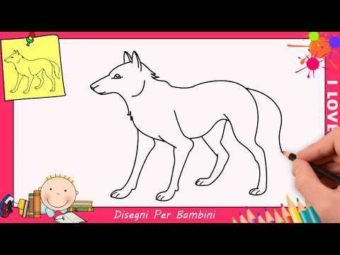 Come Disegnare Un Lupo Facile Passo Per Passo Per Bambini 2 Youtube
