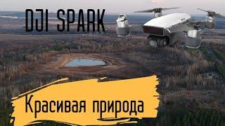 Природа / DJI SPARK