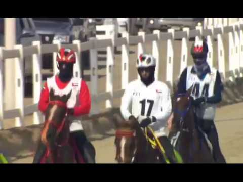 160 km HH The President of United Arab Emirates Cup 10.2.2018