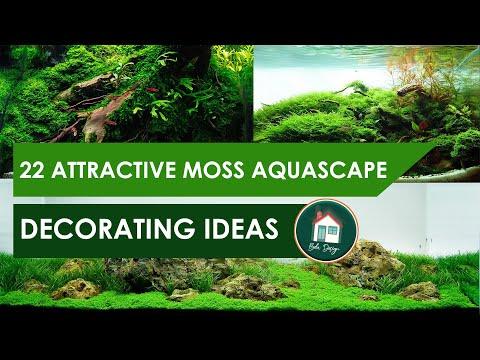 22-beautiful-moss-aquascape-decorating-ideas