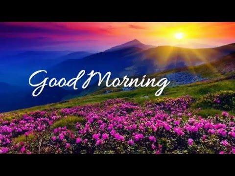 Good Morning Wishes,Good Morning Greetings,E-card,Good Morning Whatsapp video