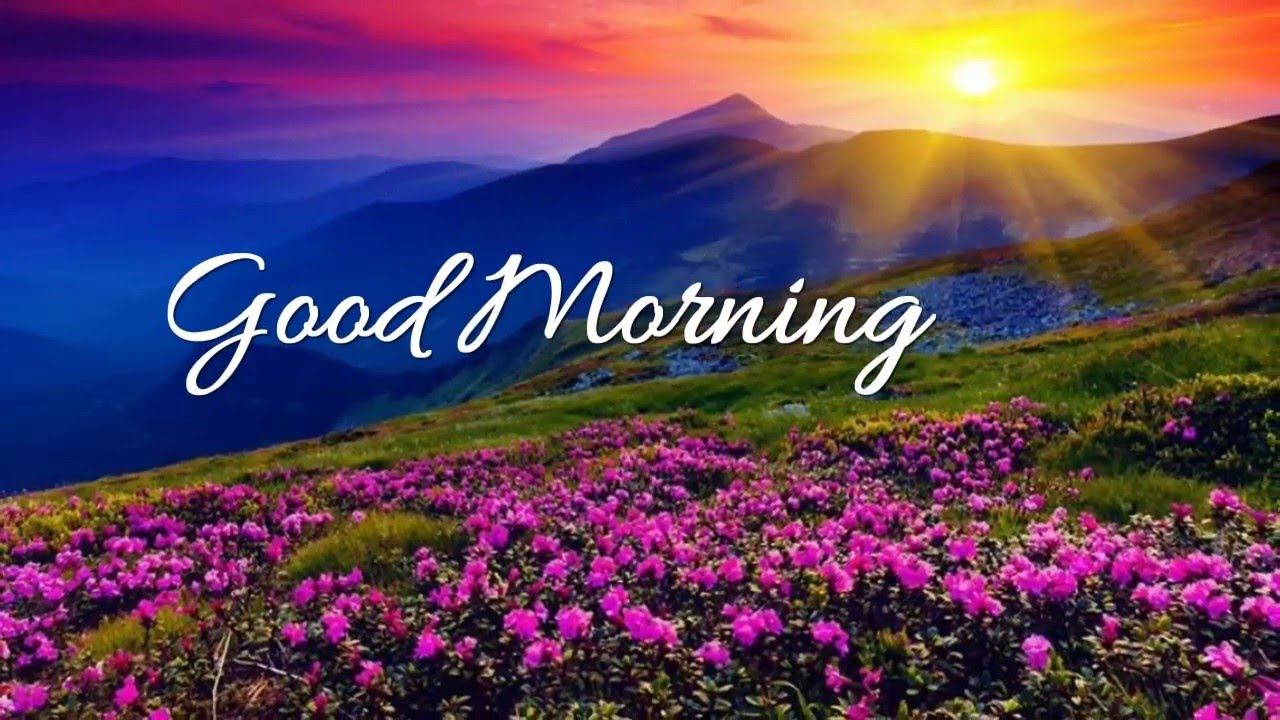 Good morning wishesgood morning greetingse cardgood morning good morning wishesgood morning greetingse cardgood morning whatsapp video m4hsunfo