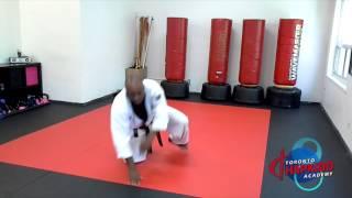Beginner breakfalls in Hapkido - Toronto Martial Arts School at Bayview-Eglinton