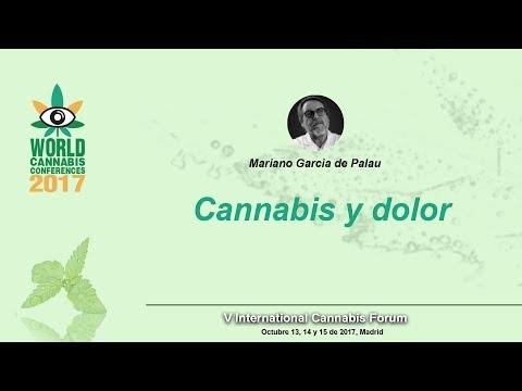 """""""Cannabis y dolor"""" - Doctor García de Palau - WCC 2017 (Spannabis Madrid)"""