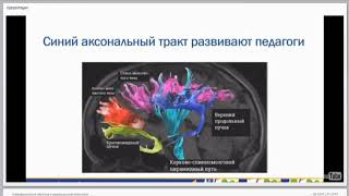 """Трейлер вебинара """"Нейрофизиология обучения в коррекционной педагогике"""""""