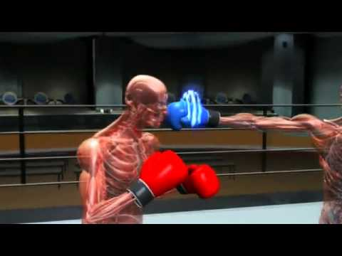 Speed of the BOXING punches part...2.flv