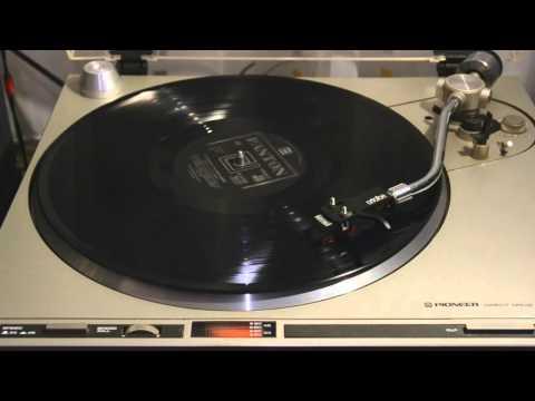 Brontosauři - Generační / Růže Z Papíru (vinyl)