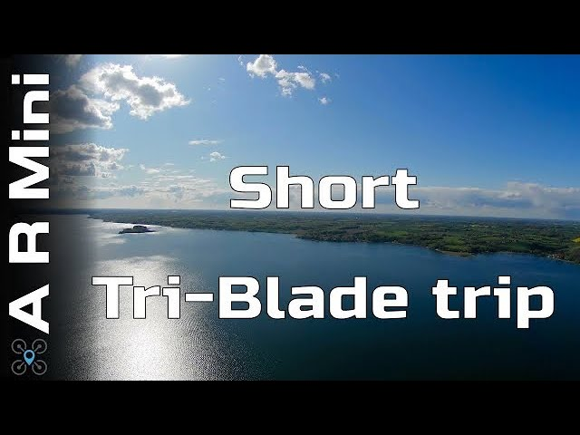 AR Wing mini - Short tri-blade trip EP:04