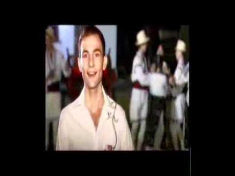 ION PALADE-Bine-i Sade Mesei mele