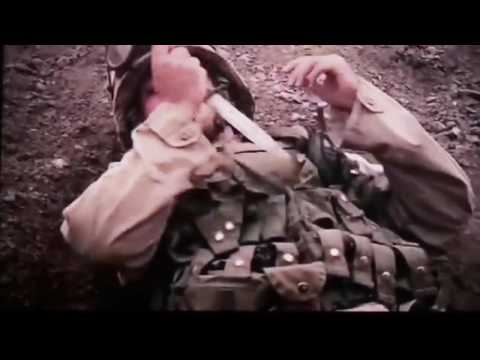 Marine Fight Against Isis with Free Bird