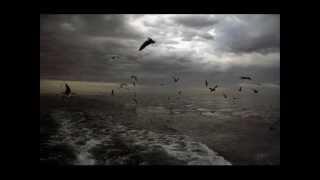 The Angelic Process - Sleepwritten (Rare)