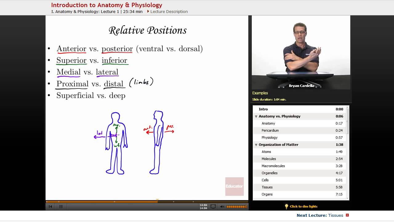 Ausgezeichnet Anatomy And Physiology Homework Help Fotos ...