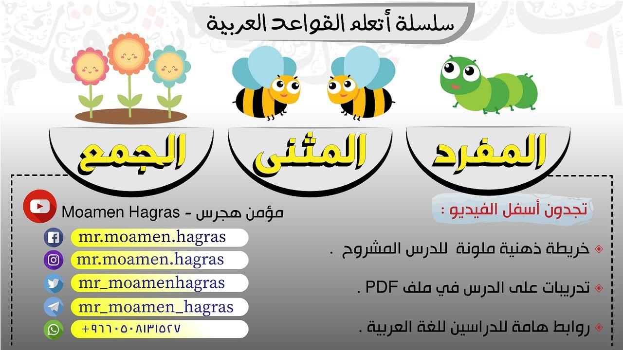 المفرد والمثنى والجمع بسهولة أنواع الاسم من حيث العدد سلسلة أتعلم القواعد العربية 10 Youtube