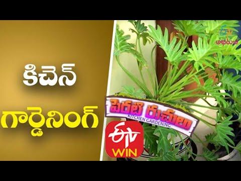 Kitchen Gardening | Perati Ruchulu | 30th November 2017 | Full Episode | ETV Abhiruchi