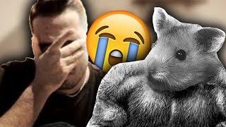 Mein Hamster ist tot...