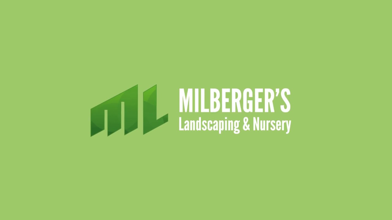 Millbergers Pollination You