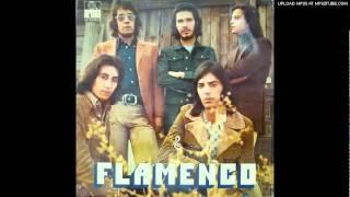Flamenco-al padre santo de roma