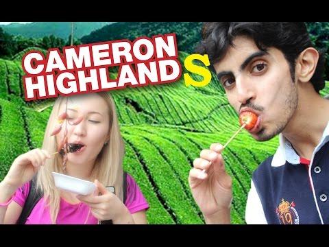 Trip to Cameron Highlands!