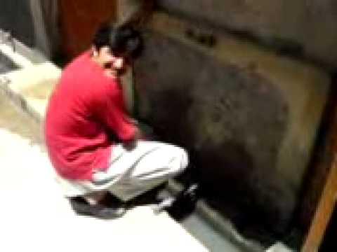 Ali Azmat's plumber