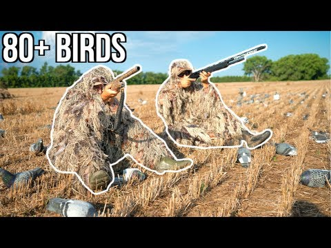 INSANE Ghillie Suit Pigeon Hunting Challenge!!! (80+ Birds)