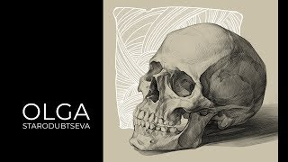 Skull. Academic drawing