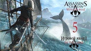 """Assassin's Creed 4: Black Flag / Черный Флаг  - Прохождение Серия #5 [""""Галка""""]"""