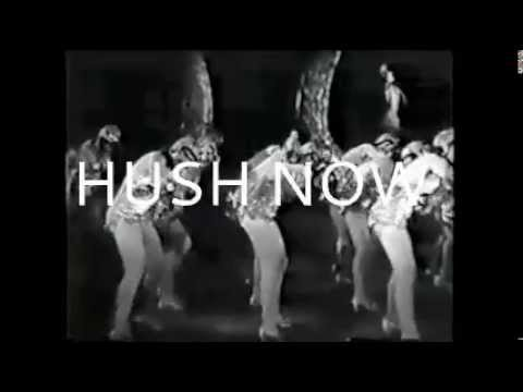 HUSH NOW by SUNNY LEVINE -full album of videos compiled