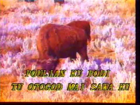 Sabah Song: Bye Bye Gaman (Jefry Kusingan)