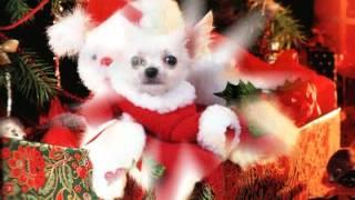 Roy Black - Weihnachten bin ich zu Haus