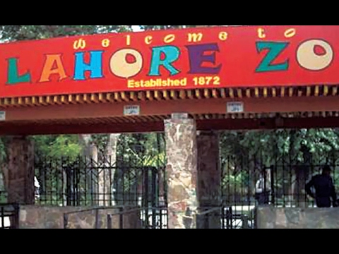 Punjab Govt Notifies Lahore Zoo To Use Urdu As Official Language