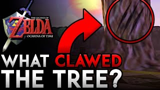 What CLAWED the Tree in Lake Hylia? | Zelda: Ocarina of Time Mystery/Theory
