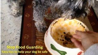 Stop Dog Resource Guarding