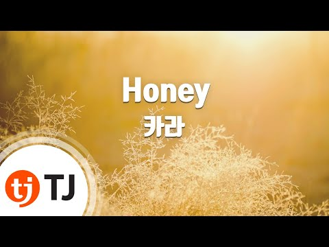 Honey 허니_KARA 카라_TJ노래방 (Karaoke/lyrics/romanization/KOREAN)