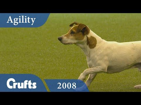 Agility - Small, Medium & Large Final 2008 | Crufts Dog Show