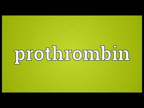 Prothrombin Meaning