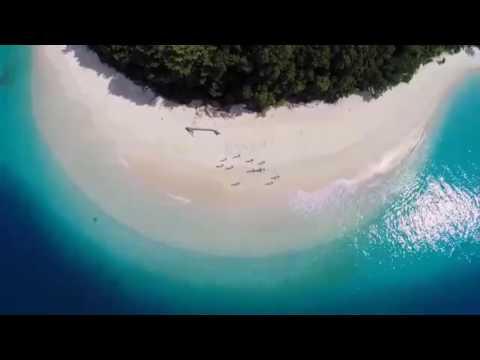 VEGAN DREAMING 😎 = 2018 VEGAN SURF FRUIT TRIP 🌏