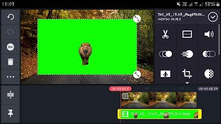 Green Screen Lion Graphic Visual Effect 2020