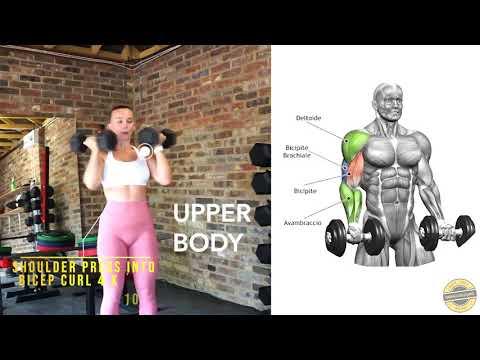 Full Upper Workout  ( EASY )
