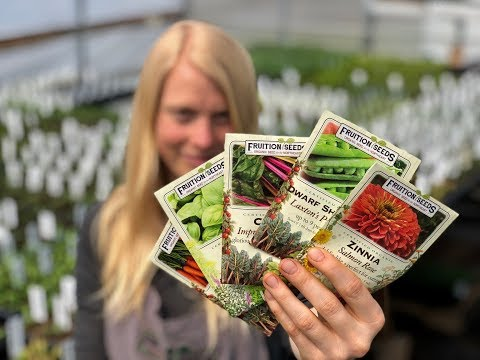 10 Easy Seeds to Sow in May