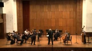 Marchenbilder-R.Schumann viola sonata op.113, Lazar Miletic viola