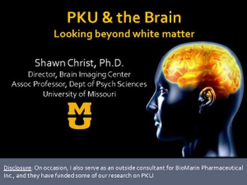 Phenylketonuria Symptoms PKU and the Bra...