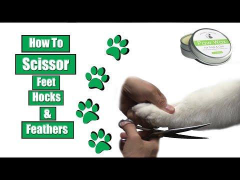 How To Scissor Feet Hocks & Feathers