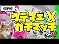 【スプラトゥーン2】ウデマエX ガチマッチ!【プラコラ/バブル/ホコ/エリア】